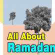 What is Ramadan All About & Why do Muslims Fast?